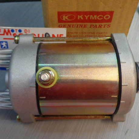 motorino avviamento kymco xciting 250 300 people s 250 300 yup 250